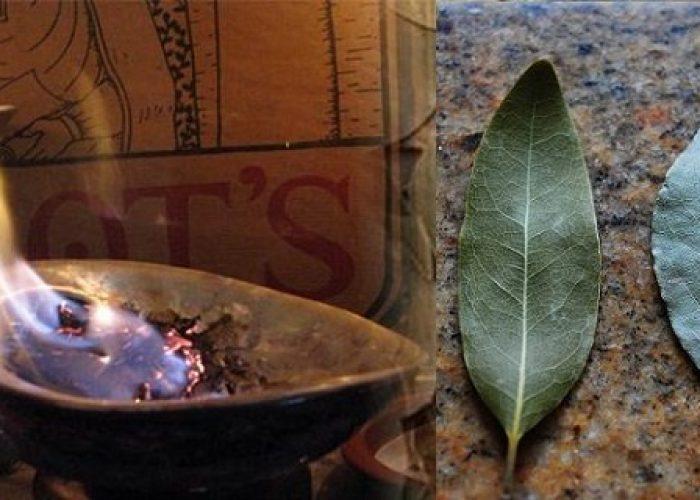 Verbrand laurierblaadjes in het huis en zie wat er gebeurt na 10 minuten