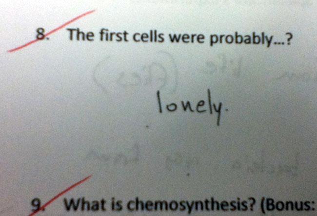 grappige-examen-antwoorden-19