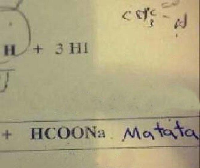 grappige-examen-antwoorden-4