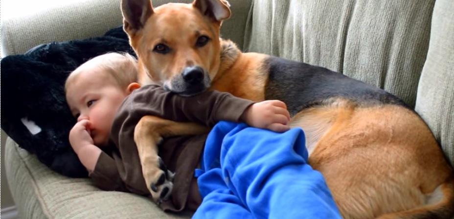 zieke-zoon-en-hond-op-de-bank