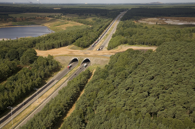 Ecoduct Kikbeek over de E314