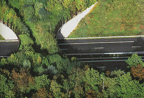 Ecoduct Frankrijk