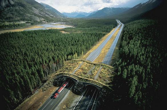 natuurpark canada