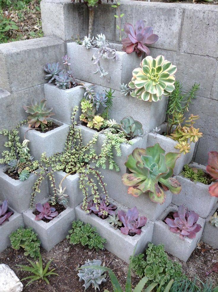 planten plantenbak beton tuin grond