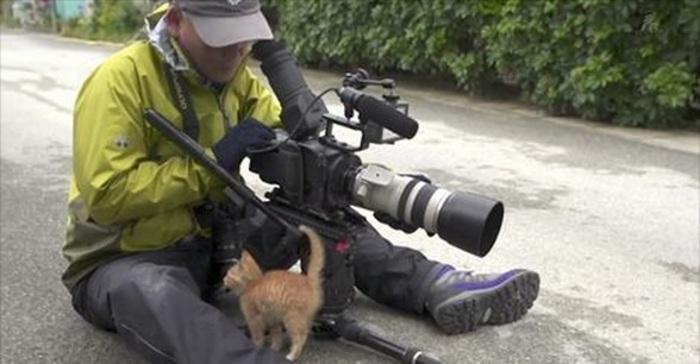 camera fotograaf