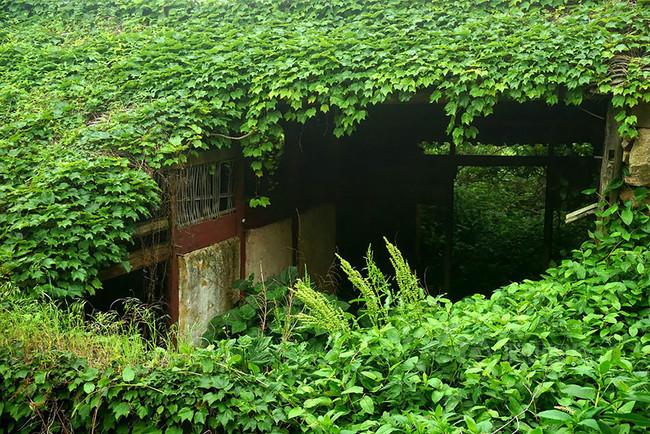 natuur huis china