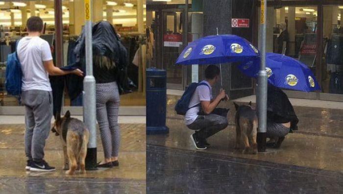 paraplu's puppy regen