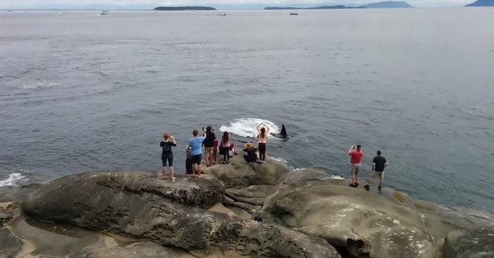 toeristen eiland vakantie orka