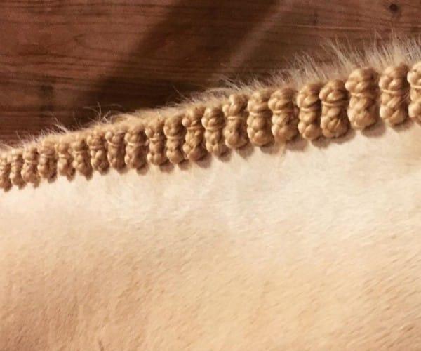 poetskist paarden