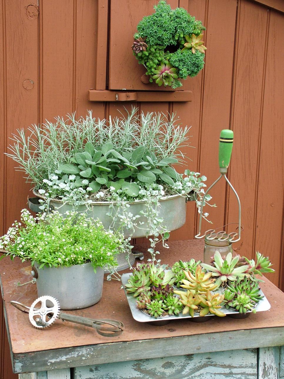 planten, tuin