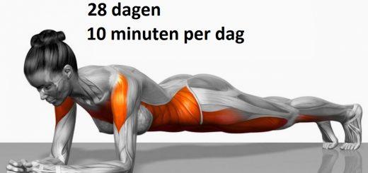 fitness-advies
